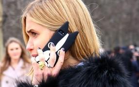 Umfrage zu den Tierohren-Handy-Hüllen