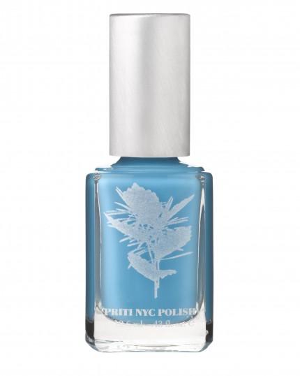 665 - Chilean blue crocus_300dpi