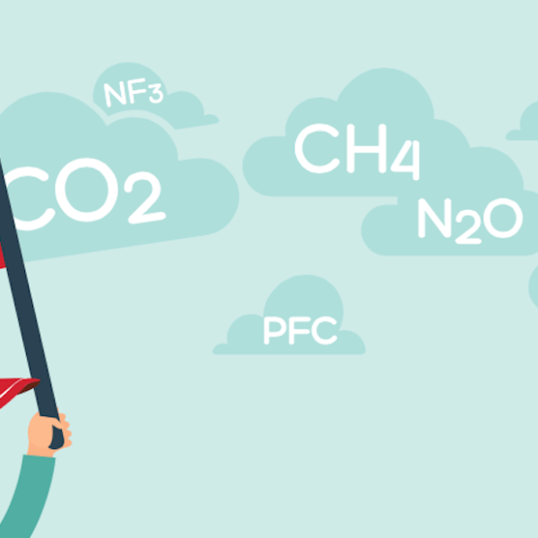 Die wichtigsten Öko-Labels im Überblick