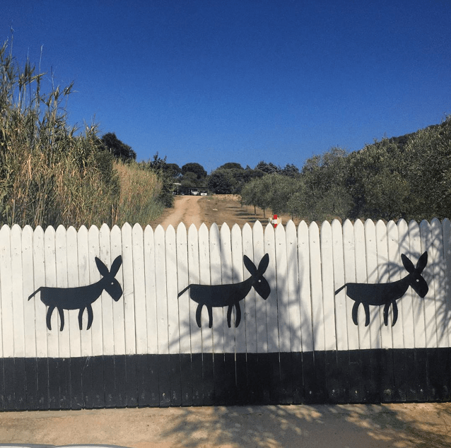 Pension Sardinien Costa Smeralda Modepilot