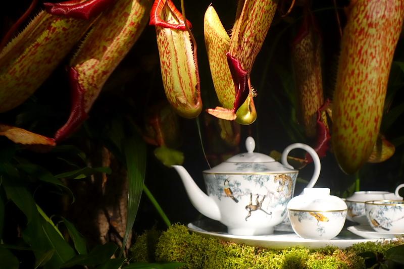Dekorationsidee für die Teestunde