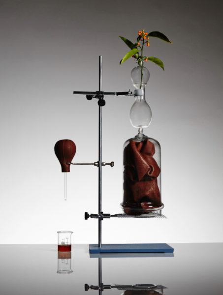 Le Mâle Essence de Parfum: zweiter Akkord aus Osmanthus und Leder