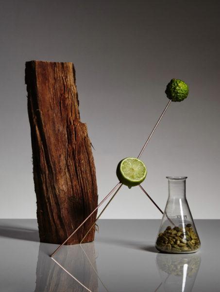 Le Mâle Essence de Parfum: erster Akkord aus Bergamotte, Kardamom, Georgywood