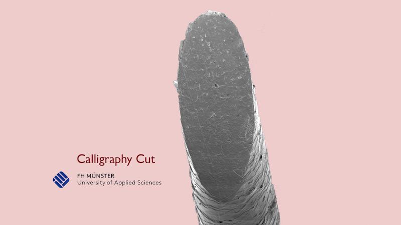 Zum Vergleich: hier die glatten Kanten nach einem Schnitt mit dem Calligraphy-Messer durch ein gesundes Haar (Schnitt mit Schere und Messer nach dem Klick auf den Pfeil)