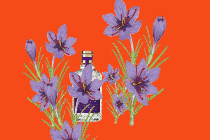 Iris Parfum Duft Modepilot